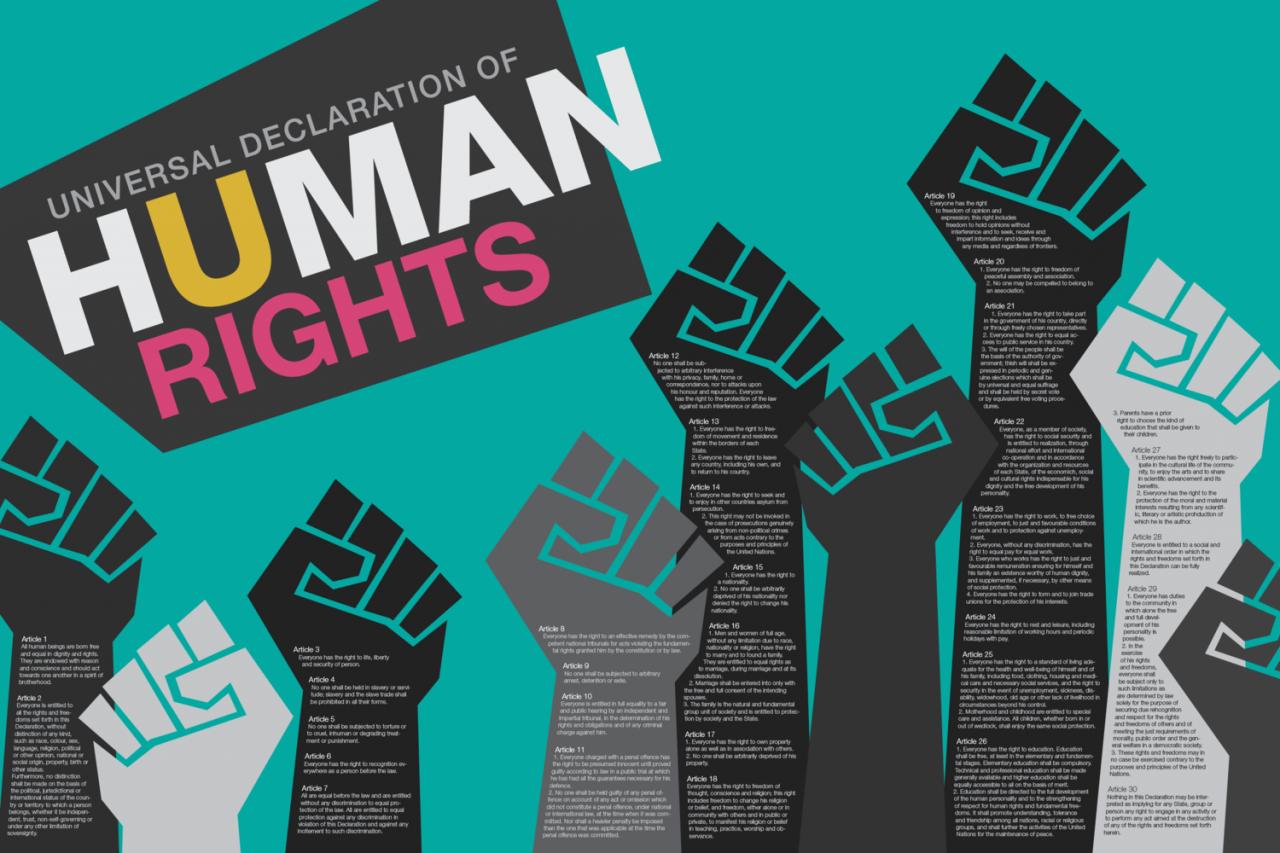 İnsan Hakları Ders Notu – İnsan Haklarını Kapsamlı Özeti